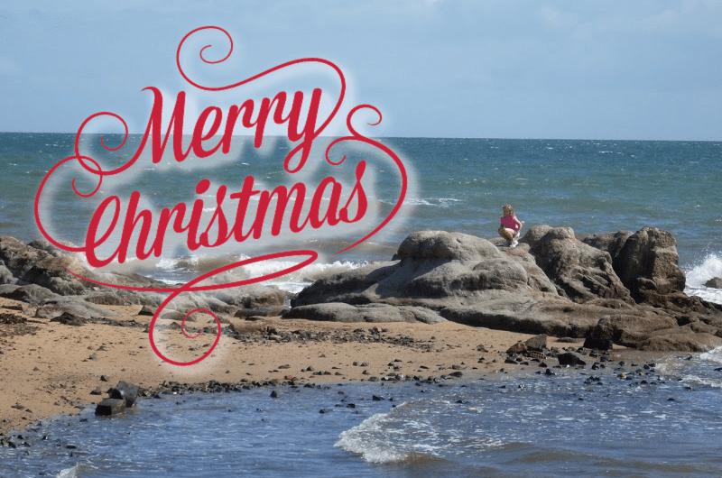 frankston beach themed christmas card photo
