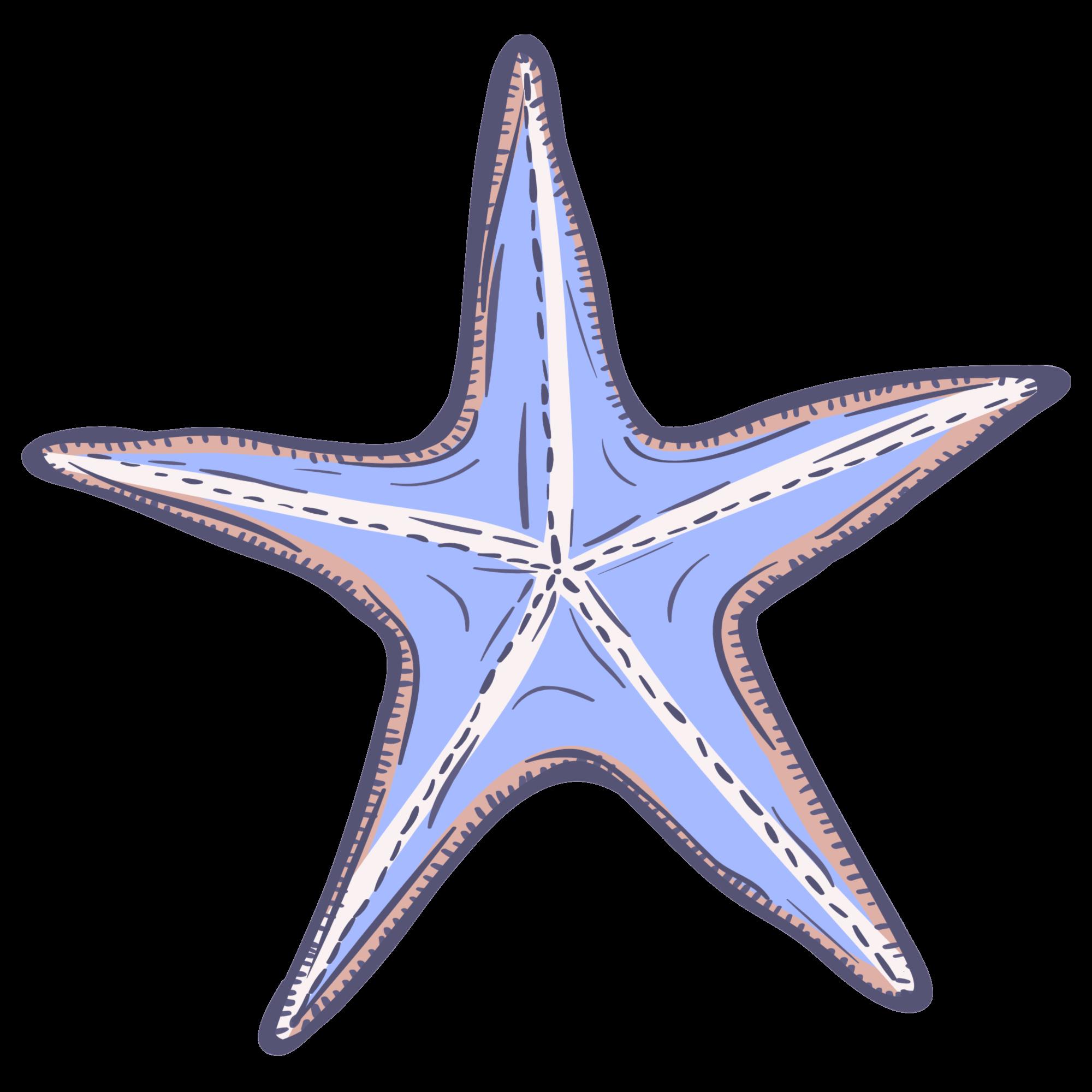 blue starfish icon