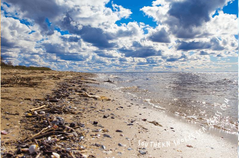 tidal drift lines